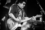 Richard Clapton Band